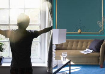 vardagsrum med grön vägg_morgonsol